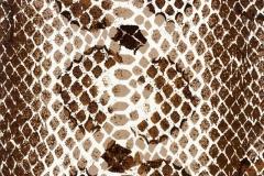 WTP-235-Snakeskin-Illusion-All-Season-Brown