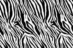 WTP-629 Zebra Mini