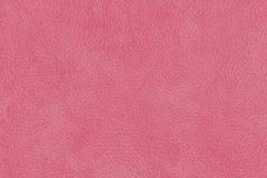 WTP-713 Italian Leather-Blush