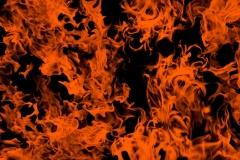 WTP-963-Naughty-Fire-Orange