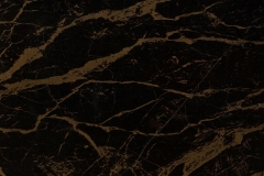 WTP-506 Gold Vein (Black)